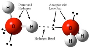 Figure 1: Diagram of a typical hydrogen bonding between water molecules. Image credit: John Millam