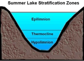 Figure 4. Lake cross-section showing three primary layers Image used with permission: Keith C. Heidorn, PhD, The Weather Doctor.