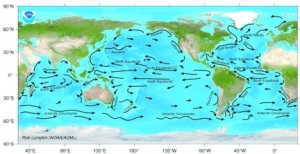 Figure 1. Surface ocean currents Image credit: NOAA