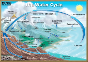 Figure 1: The water cycle. Image credit: U.S. Dept. of the Interior U.S. Geological Survey John Evans, Howard Perlman, USGS http://ga.water.usgs.gov/edu/watercycle.html