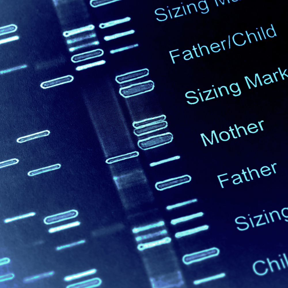 Dna Fingerprint Wallpaper Human-dna-fingerprint.jpg
