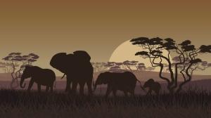 elephants-grassy-plain