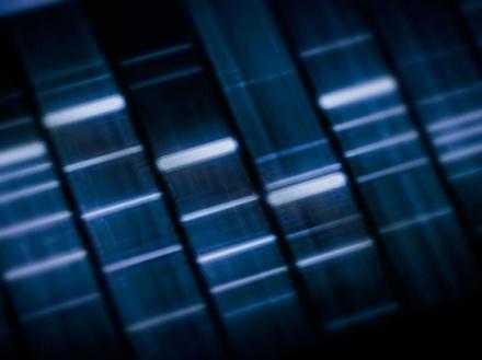 genes-4
