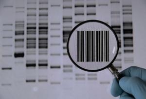 genetic-code-2
