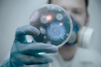 A Common Design View of ERVs Encourages Scientific Investigation