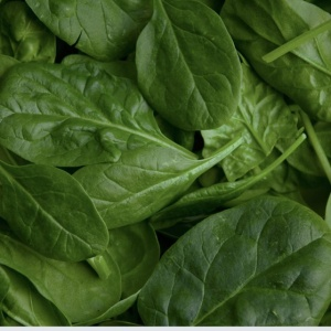 green-spinach-1