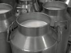 How Milk and Bacteria Help Us Grow
